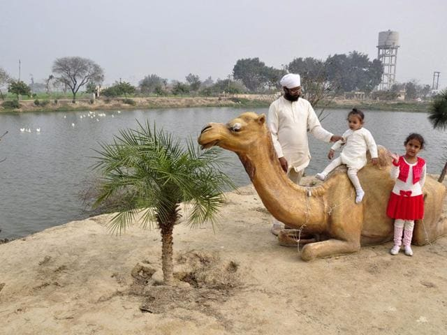 Visitors enjoying picnic at the man-made lake at village Chakkar in Ludhiana. (Sikander Singh Chopra/HT)
