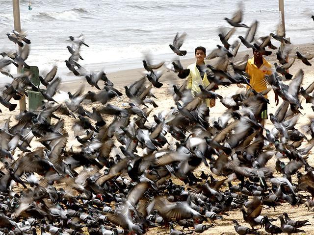 People-take-a-stroll-at-Juhu-beach-as-mercury-levels-continued-to-soar-in-Mumbai-Vidya-Subramanian-HT-photo