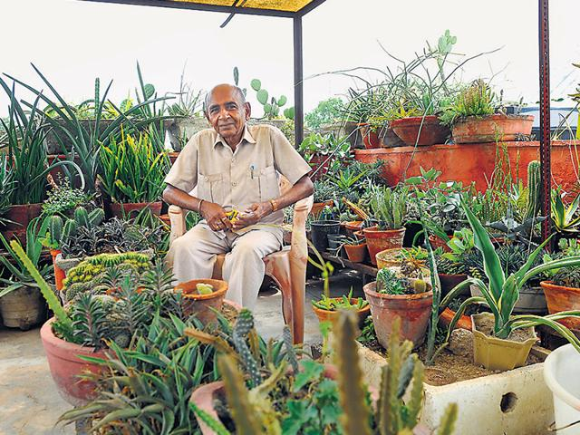 78-year-old retired zoology professor Bhagwan Prasad Saxena has named his house 'Cactus House' and has been collecting plants since 1957. (Sunil Ghosh/ HT Photo)