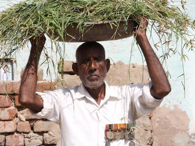 Vir Chakra awardee havildar Budh Singh working in fields in Mahendergarh. (Manoj Dhaka/HT)
