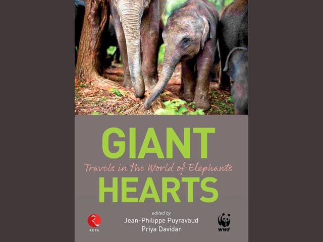 Book,Elephants,Giant Hearts: Travels in the World of Elephants