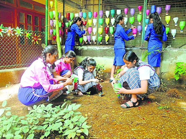 Auxilium Convent School,Pali Hill,Creating compost
