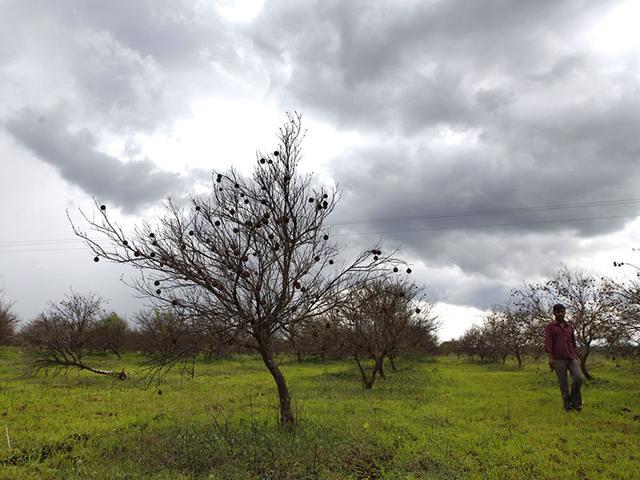 Farmer-drought