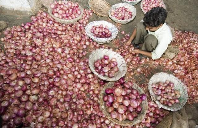 Wholesale onion prices grew 65.29% in August compared with last year.