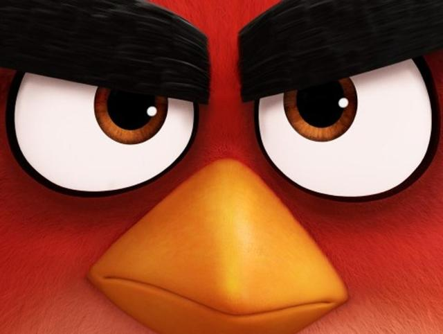 Image Result For The Angry Birds Movie