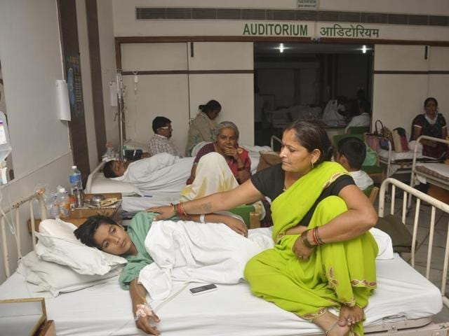 Ludhiana has so far witnessed at least 330 cases of dengue since July.