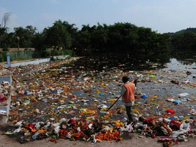 Central Pollution Control Board,eco-friendly,pollution from idols