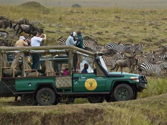 Tourists watching the great migration of hundreds and thousands of wildebeest and zebras.