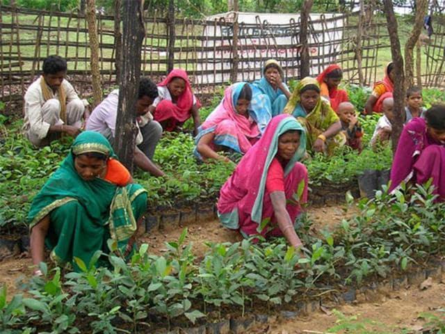 Tribal rights,Environment,NITI Aayog