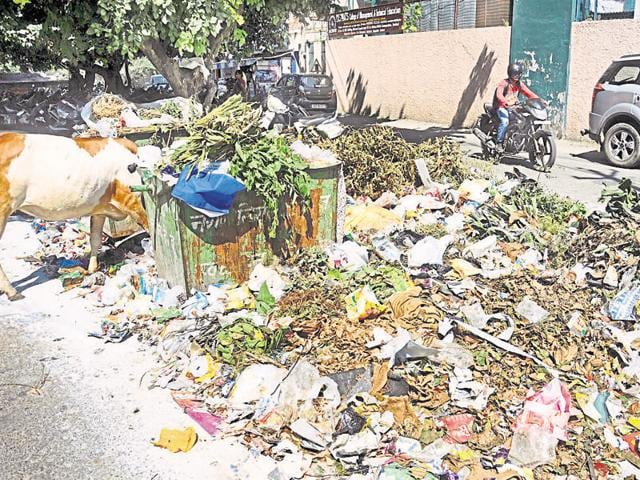 Garbage lying outside a dustbin at Municipal Road in Dehradun on Thursday.