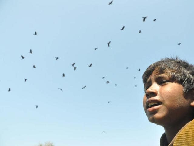 A ragpicker who talks to crows