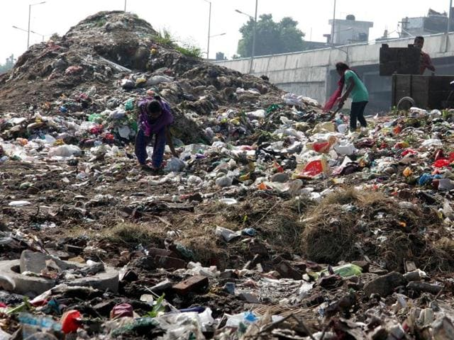 Garbage heaps speak volumes of Ludhiana's indifference to cleanliness.