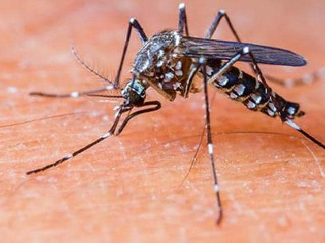 Punjab's seven-year-old record for the number of dengue-fever cases in a season is under threat. A late-receding monsoon is responsible for activating the vector.