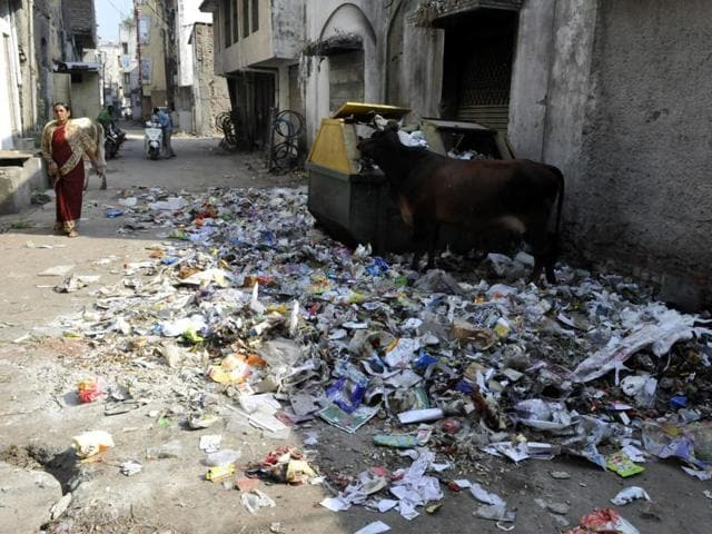 Referring to the solid waste management system in the city, Ninu Sehgal said the issue of haphazardly created collection points for garbage will also be raised during the board meeting.