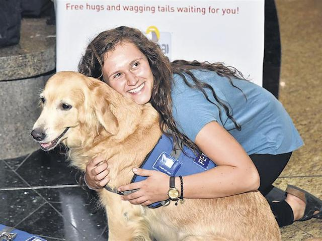 Travellers play with a Golden Retriever at the Mumbai airport's T2 departure section.