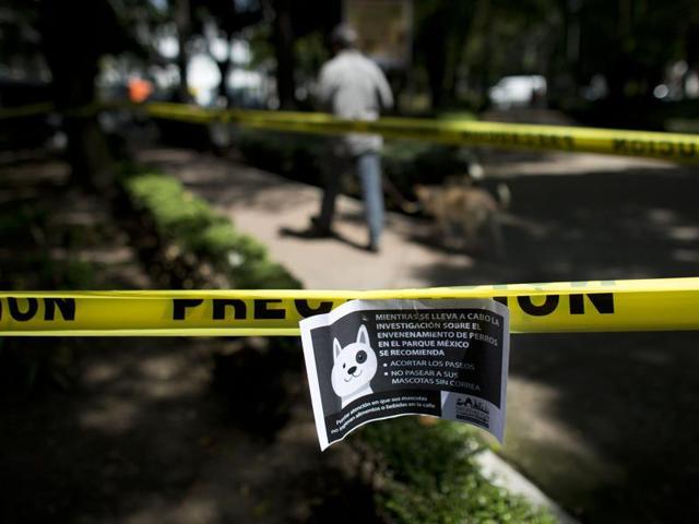Serial dog killer,Parque mexico,Poisoning