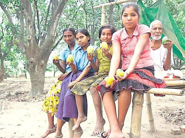 Girls in a mango orchard at Dharhara village in Bihar.