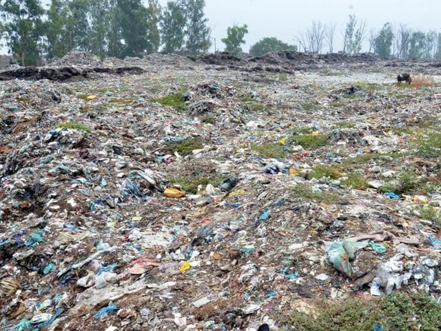 File photo of the garbage dump yard at Bhagtanwala in Amritsar.