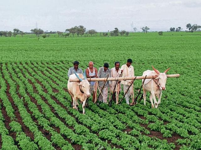 Farming,Rural crisis,Agricultural growth in India