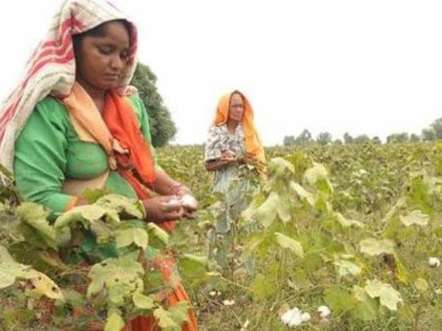 Badal said a panel for farmers' cause would be a real tribute to Lok Nayak Jai Prakash Narayan.