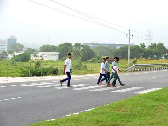 road accidents,road kills,road deaths