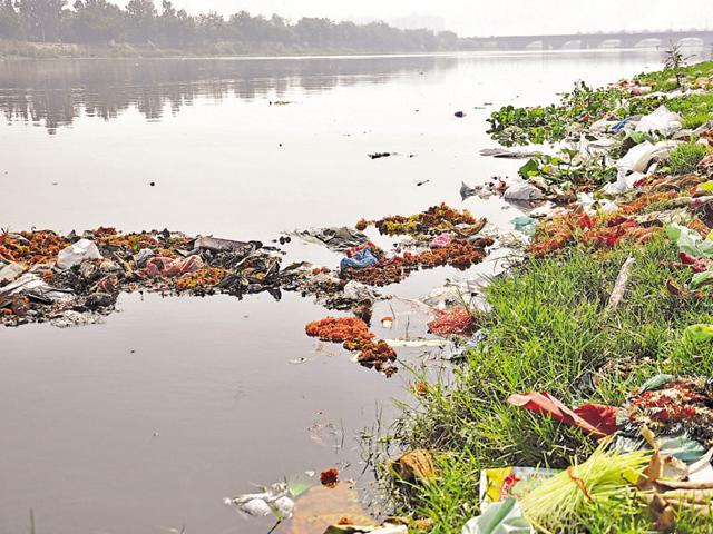 The administration succeeded in preventing idol immersions in the river Hindon and the Upper Ganga Canal, the river banks were a mess on Friday. Municipal corporation officials said cleaning of the banks will be undertaken immediately.