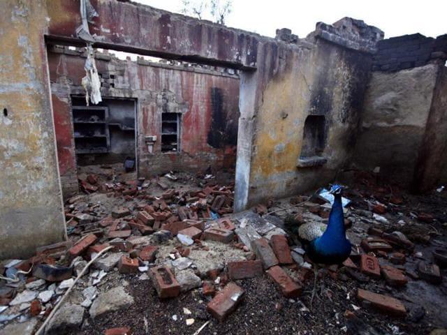 Homes burnt and looted at Bahawadi village in Muzaffarnagar.