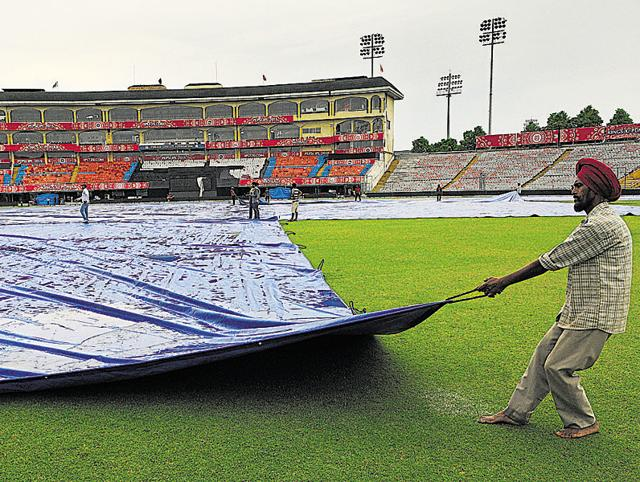 Wankhede pitch curator