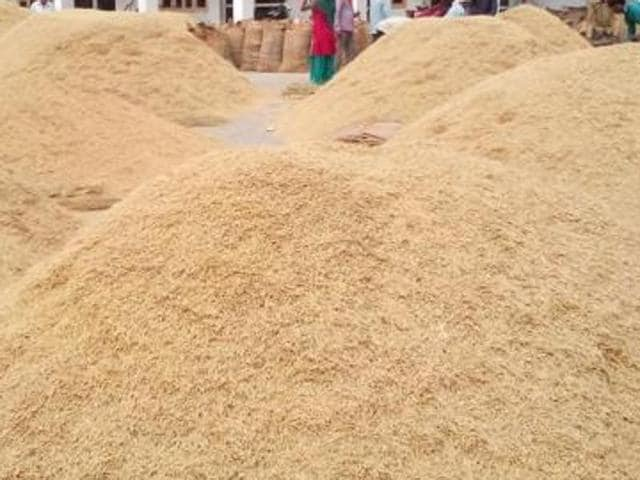 Over 3.5 lakh metric tonnes of paddy has been purchased in Tarn Taran.