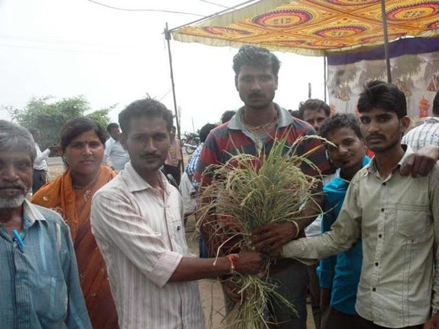A group of farmers shows damaged crop in Sehore district.