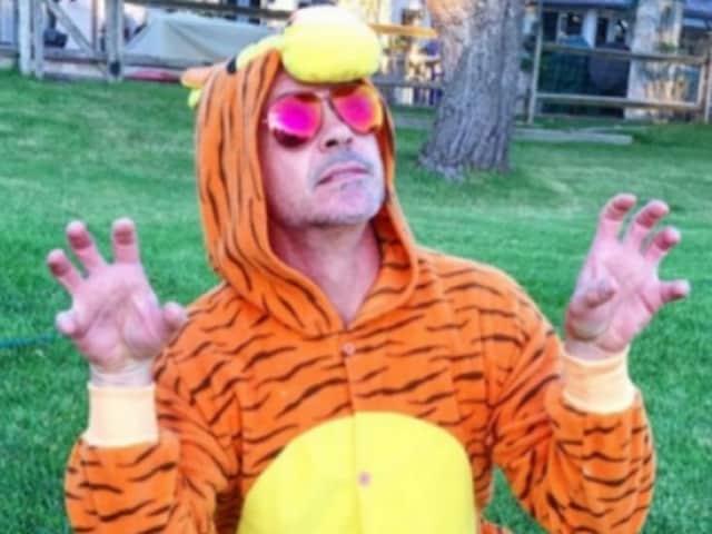 Robert Downey Jr,Iron Man,Tigger