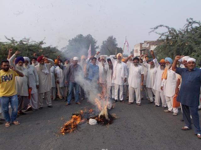 Protesters burning the effigy of Parkash Singh Badal  near Tarn Taran on Friday.