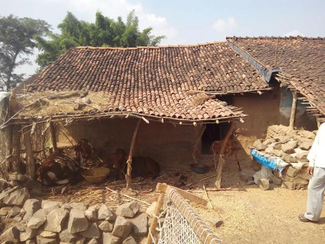 farmer suicide in MP,farmer ends life in Barwani,crop loss in MP