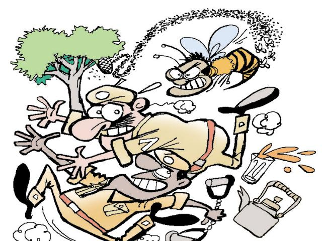 The injured men were rushed to a nearby private hospital with bee stings and swollen faces and hands.(Illustration: Jayanto)