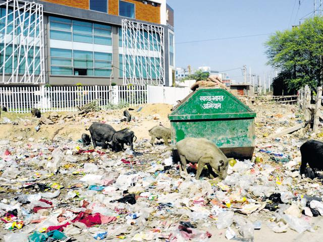 Gurgaon did not enter the Centre's Smart City project as it fared poorly in open defecation and solid waste management.