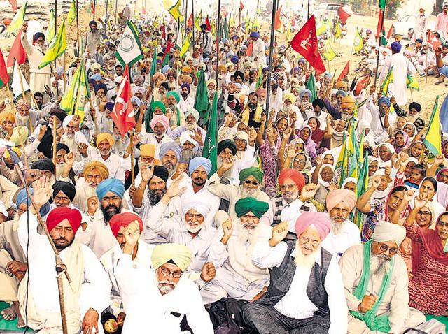 The farmers are demanding Rs 4,500 per quintal for the 1509 basmati variety and Rs 5,000 for 1121 variety and a compensation of Rs 40,000 per acre for the loss to the cotton crop and Rs 20,000 per acre to farm labourers.