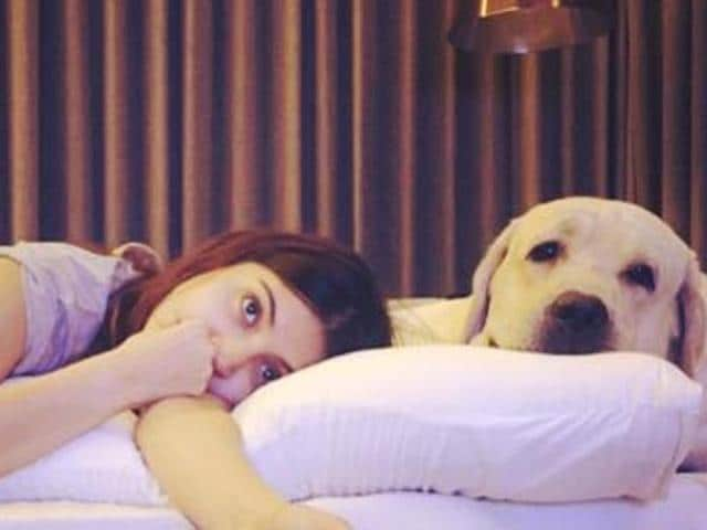 Anushka Sharma began a campaign for pets this Diwali and it has been catching momentum, at least online.