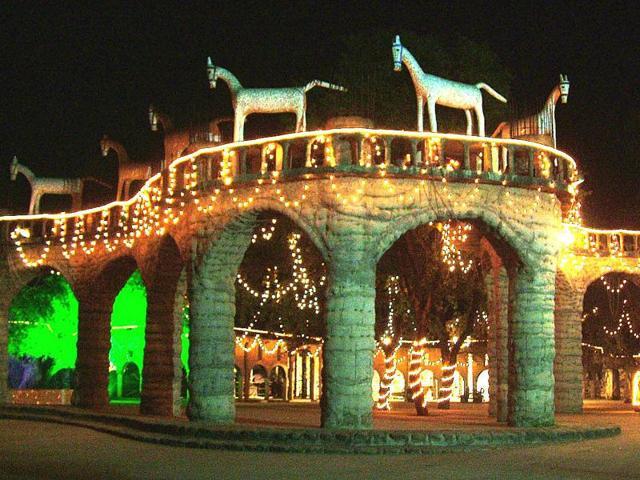 Rock Garden,Nek Chand,Night illumination