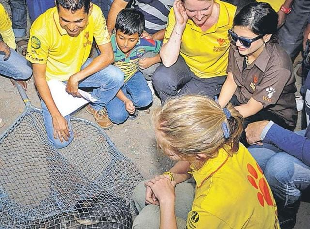 Sakshi Dhoni (brown shirt) takes part in an anti-rabies drive in Ranchi on Friday.