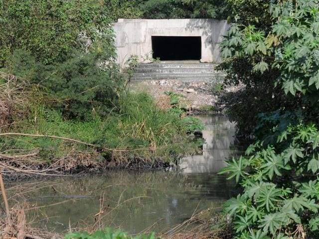 This is the sewerage opening from where the waste enters the natural choe in Sector 53 next to newly built park in Chandigarh.