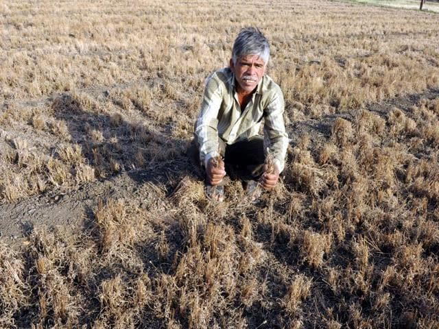 The farmers not only need access to climate-resistant varieties across agrarian products, but such interventions have to reach them before a natural disaster actually strikes.