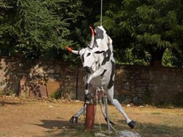 The Bovine Divine installation depicting a cow was put up at Jaipur Art Summit but was later removed by police intervention.