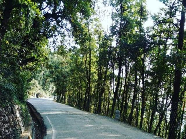 Escape the monotony of urban life by heading to the twin Himalayan hill stations of Dharamsala and McLeodganj.