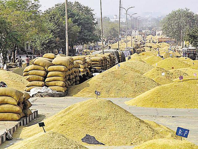 The Bhamashah Mandi remains deserted on Tuesday following the statewide protest of traders, in Kota on Tuesday.