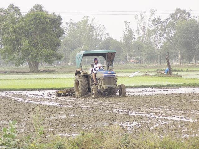 Piyush Goyal,agriculture,subsidy