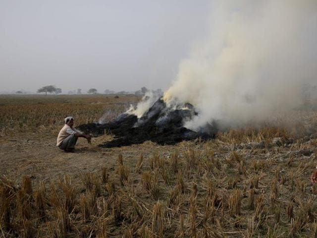 Farmers burn paddy stubble after harvesting rice on the outskirts of Allahabad, India.