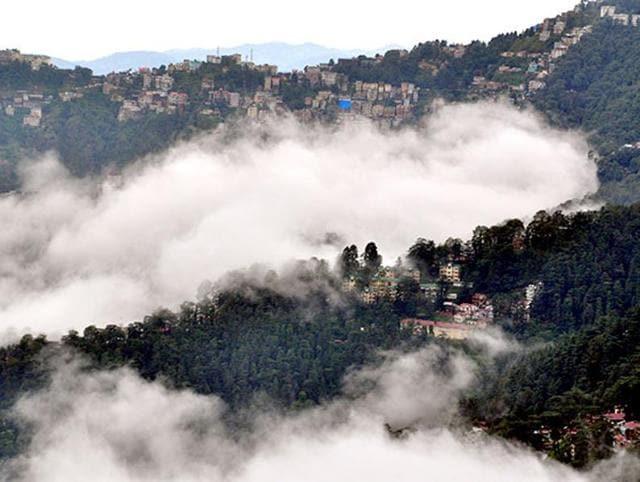 Shimla,Cart road,NGT