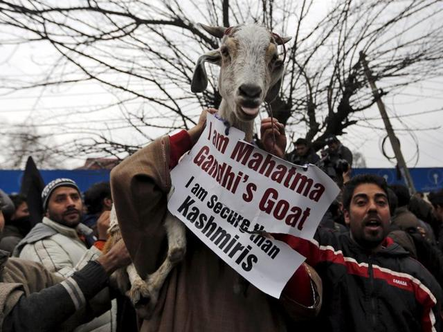 Supporters of Engineer Rashid carry a goat as they shout slogans during a demonstration to mark International Human Rights Day in Srinagar.