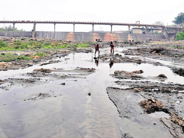 Pollution board has identified 207 km of stretches along eight rivers with high toxin levels.(Bijay/HT Photo)