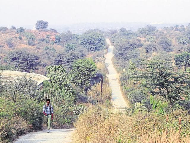 MCG officials said the Aravalli Biodiversity Park, off MG Road, did not have enough number of guards to keep a vigil on the area.(Sanjeev Verma/HT Photo)